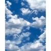 Promaster-Scenic Backdrops - 8' x 10' - Clouds #6938-Backgrounds