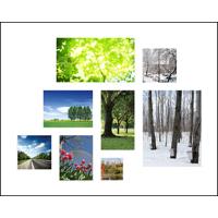 16x20 Print Collage - H