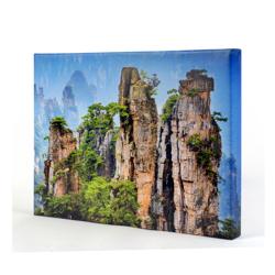 30 x 20 Canvas - 1.5 inch Image Wrap