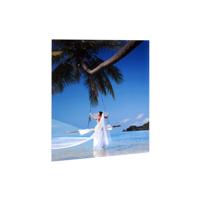 11x14 Vertical Gloss White Aluminum Panel