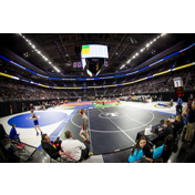 Wrestling State finals 3-7 matches