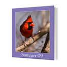 8 x 10 Soft Cover Photo Book