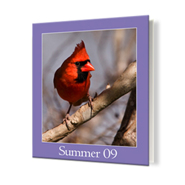 8 x 10 Hard Cover Photo Book