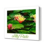 12 x 12 Photo Book