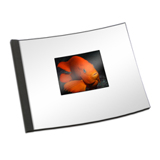 8.5 x 11 (HP) Clear Cover Photo Book