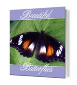 8.5 x 11 Photo Book