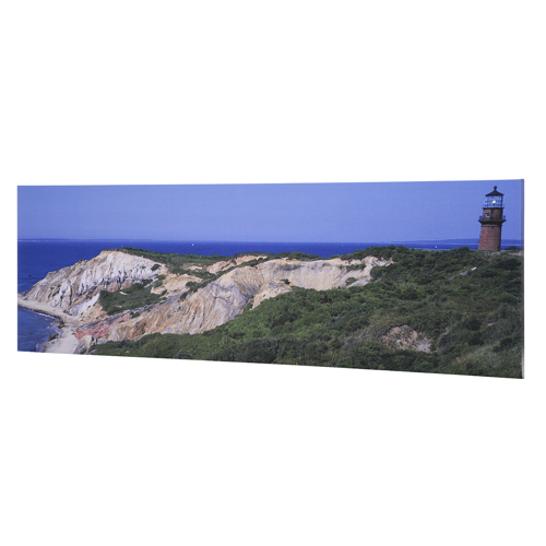 12 x 36 Gallery-Wrapped Canvas