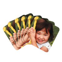 Photo Coasters, Set of 6