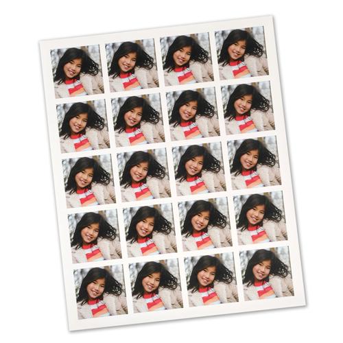 Sticker Sheet (20)