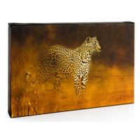 10 x 8 inch Horizontal Canvas