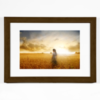 Mocha Horizontal 8x10 Framed Print