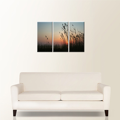 Canvas 30x20 (3-10x20 Panels)