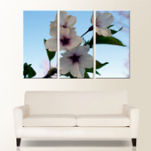 Premium 54x36 Canvas (3-18x36 Panels)