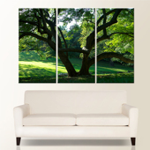 Premium 60x40 Canvas (3-20x40 Panels)