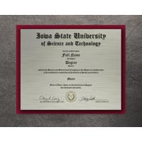 Black Leather Metal Diploma