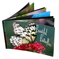 Clear Cover Spiral Bound