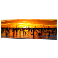 10x30 Horizontal Metal - Gloss