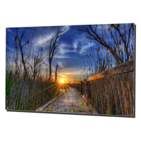 16x24 Horizontal Metal - Gloss
