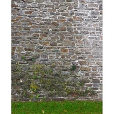 promaster scenic backdrops 8 x 10 garden wall 6966 - Garden Wall