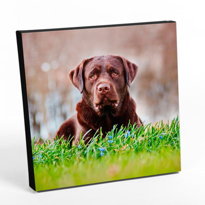 "10x10"" Photo Canvas Print - Black Edges"