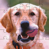 Childs Square Puzzle (25 pcs)