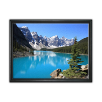 16x20 Black Framed Canas in Shadow Box - Not Made In Store
