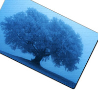 12x15 Large Glass Art