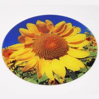 Large Round Glass Art