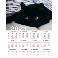 """200x250mm (8 x 10"""") Poster Calendar - 2021"""