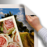Large Format and Fine Art Prints