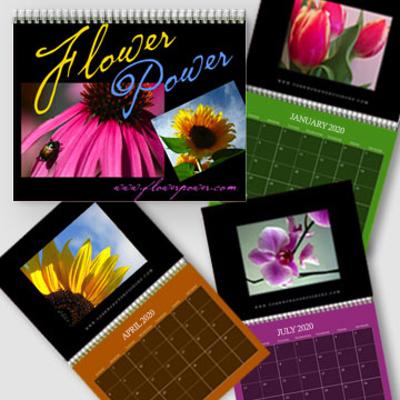 8.5 x 11 - 2020 Dark Color Background Wall Calendar - Freestyle
