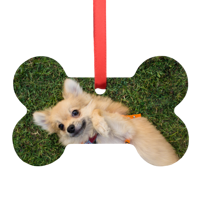 Metal Pet Bone Ornament
