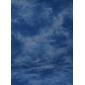 ProMaster-Patterned Muslin Studio Backdrop - 10' x 20' - Blue Cloud #8089-Backgrounds