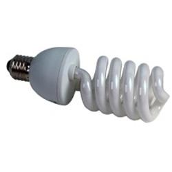 ProMaster-Cool Light Lamp - PL94 5500K #6825-Bulbs & Flash Tubes