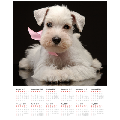16x20 poster calendar with 1 image gift specifications halton