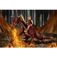 Fire Dragon (No Armour) + 8x10'' Print