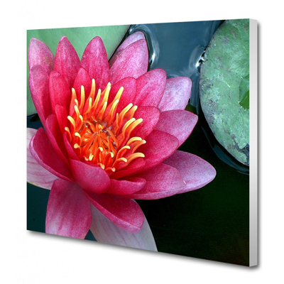 A4 - 21.0 cm x 29.7 cm Canvas - 20mm White Wrap