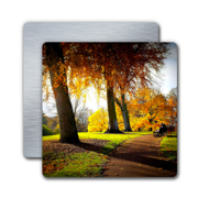4x4 White Gloss Metal Print #6060