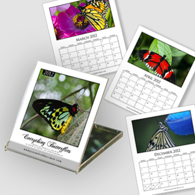 Jewel Case Calendar - White Background