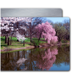 4x6'' Single Layer HD Metal Single Image Landscape