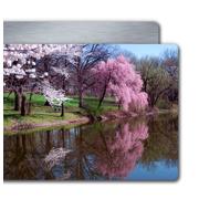 4x6 White Glossy Metal Print Horizontal #6024