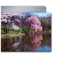 8 x 10 - ChromaLuxe Landscape High Gloss Finish