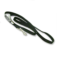 Pet Leash 6 Feet