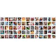 16x40 Collage Print