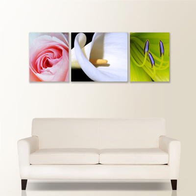Trilogy 3 Piece Canvas Wall Display