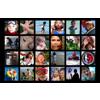 17x11 - 24 Photos Collage