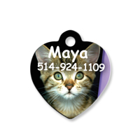 Heart Shape Pet Tag