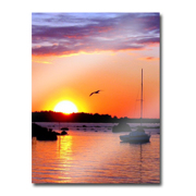 Acrylic Prints Frameless Mounting Photo Products Livingston