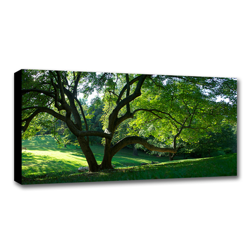 12 x 36 Canvas - 1.5 inch Black Wrap