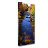 10 x 30 Canvas - 1.5 inch Image Wrap